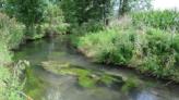 Gewässerportraits - Wasserwirtschaftsamt M nchen